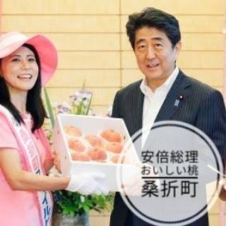 【安倍総理辞任】安倍総理も食べた美味しい桃。