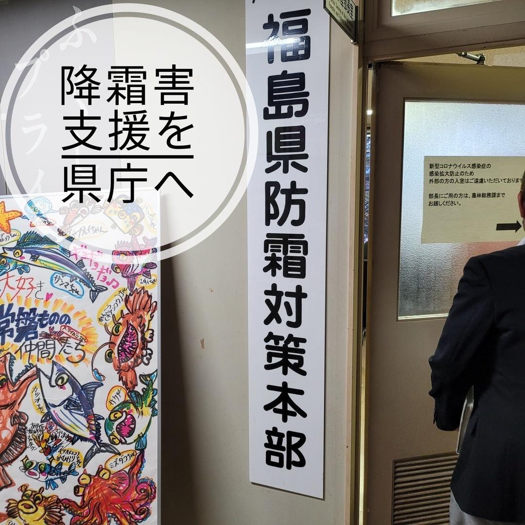 【桃を守ります!行動あるのみです!】大きな霜被害が出ている桃生産者支援を要望すべく、福島県庁へ伺っています。県からの迅速な支援に期待します。