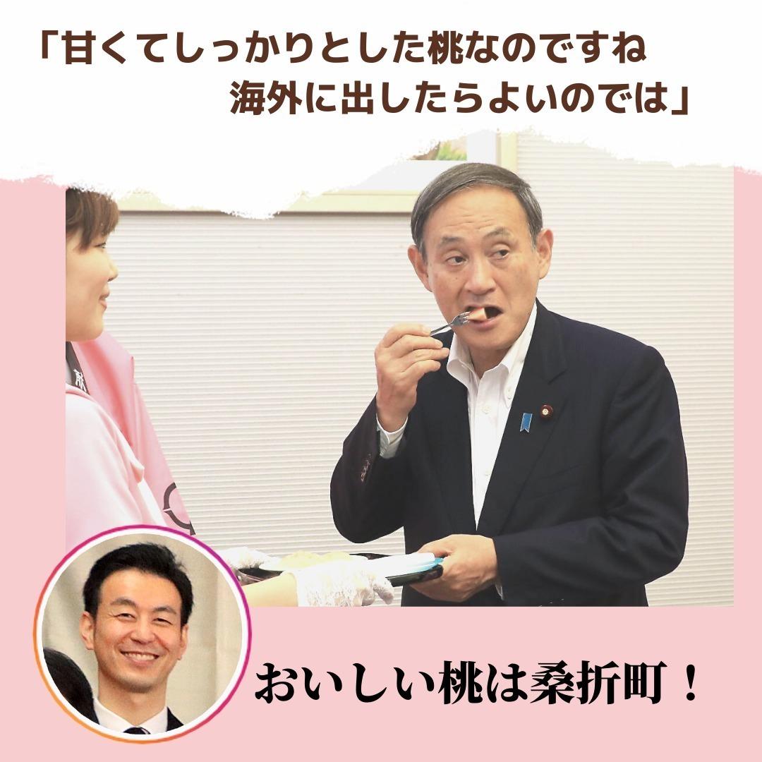 【菅総理も召し上がった美味しい桃】菅政権も桃シーズンと一緒に終わってしまうようですね。お疲れさまでした。